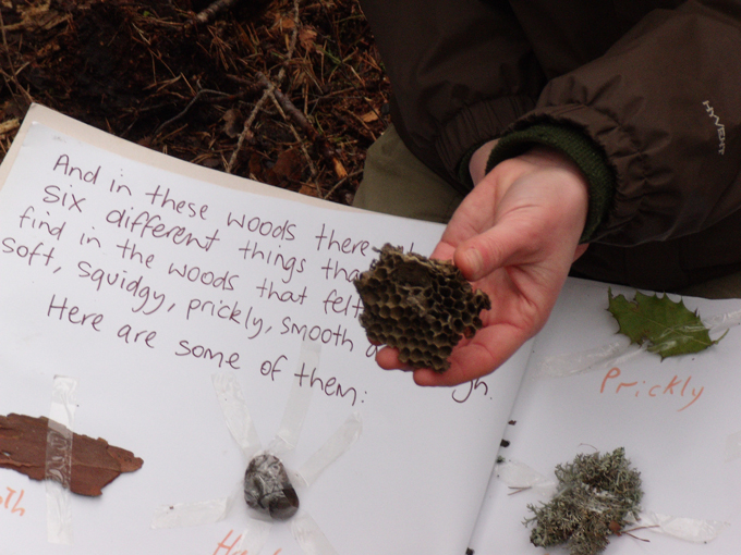 Mortlach Story Walks - Woodland session with environmental educators, Wild Things